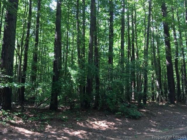 Lot 41 Wilton Creek, Hartfield, VA 23071 (MLS #1725792) :: Chantel Ray Real Estate