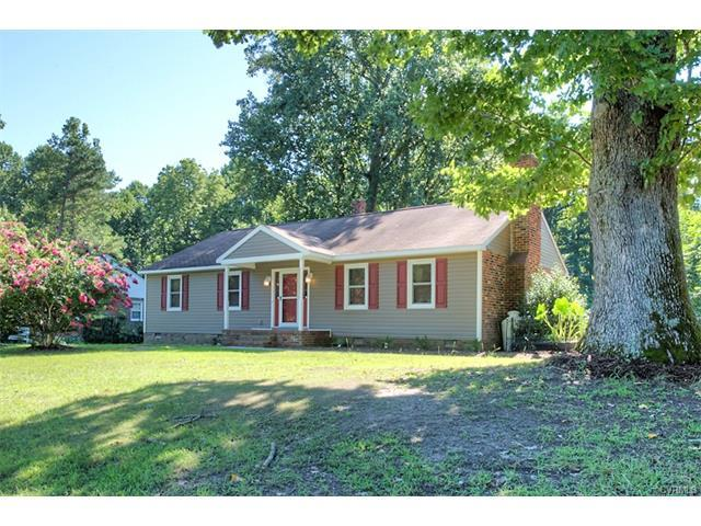 10101 Old Quarter Lane, New Kent, VA 23124 (MLS #1729293) :: The RVA Group Realty