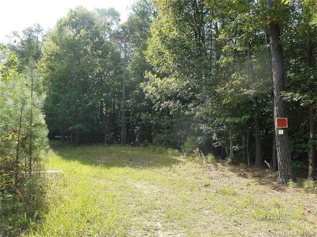 000 Shooter Run Road, New Kent, VA 23124 (MLS #1729542) :: The Ryan Sanford Team