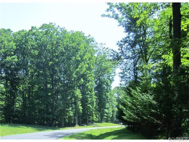 980 Preservation Road, Midlothian, VA 23113 (#1730555) :: Resh Realty Group