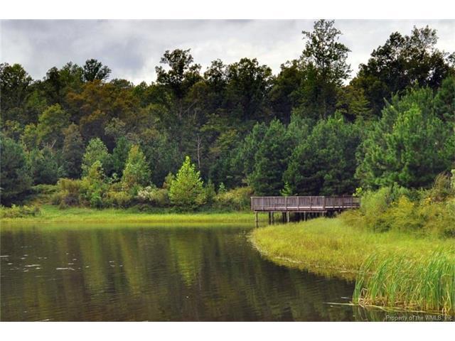 209 Cliftons Bluff, Williamsburg, VA 23188 (MLS #1730957) :: Chantel Ray Real Estate