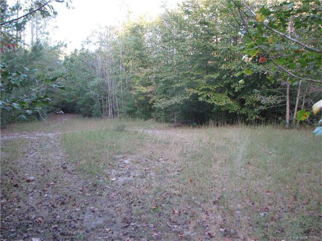 0 Lost Colony Drive, New Kent, VA 23124 (MLS #1735775) :: The RVA Group Realty