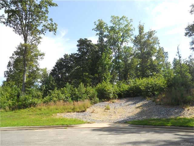 19949 Chesdin Harbor Drive, South Chesterfield, VA 23803 (MLS #1736616) :: Explore Realty Group