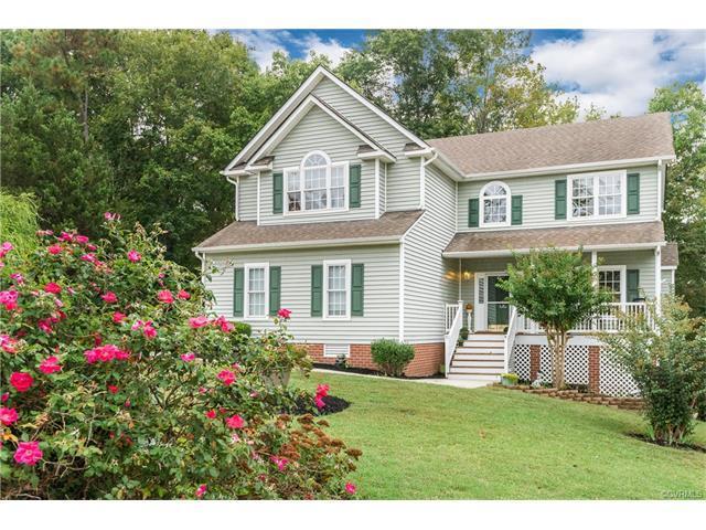 8225 Hampton Glen Drive, Chesterfield, VA 23832 (#1736666) :: Abbitt Realty Co.