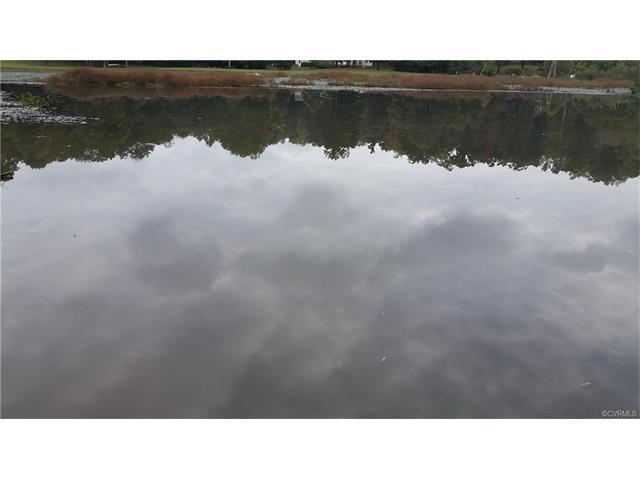 2352 Branchway Creek Drive, Powhatan, VA 23139 (MLS #1736907) :: Chantel Ray Real Estate