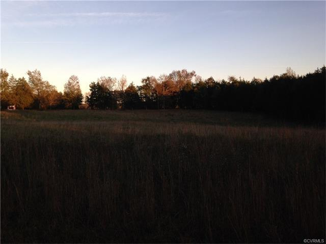 672 NE Turner Road, Goochland, VA 23063 (MLS #1737277) :: The RVA Group Realty