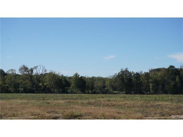 Lot 1 Old Buckingham Road, Powhatan, VA 23139 (MLS #1737401) :: The RVA Group Realty