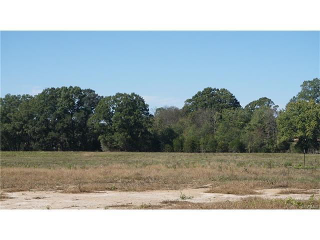 Lot 2 Old Buckingham Road, Powhatan, VA 23139 (MLS #1737403) :: The RVA Group Realty