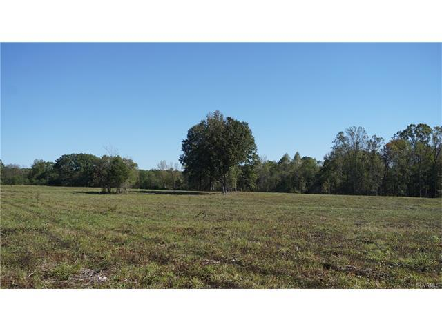 Lot 6 Old Buckingham Road, Powhatan, VA 23139 (MLS #1737439) :: The RVA Group Realty