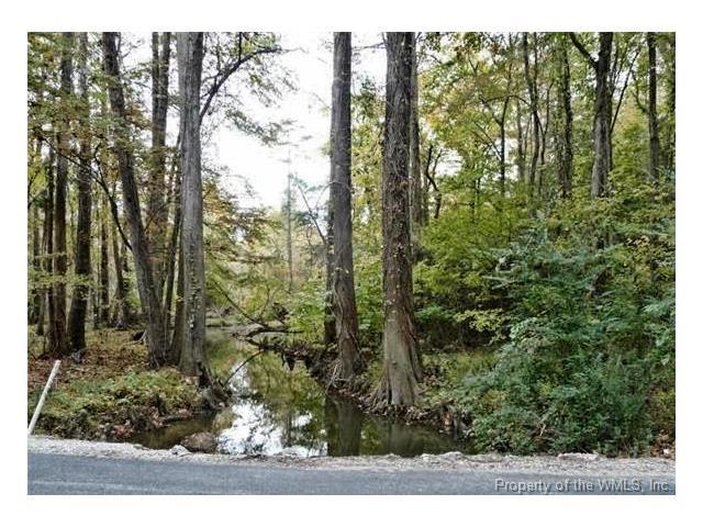 6701 Cranstons Mill Pond Road, Williamsburg, VA 23168 (#1737490) :: Abbitt Realty Co.