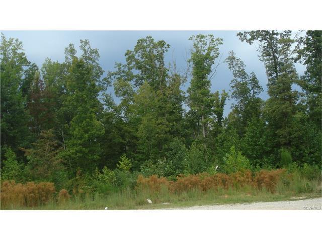 0 Ragland Road, Goochland, VA 23063 (#1737529) :: Abbitt Realty Co.