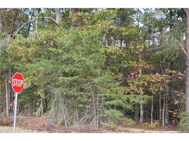 TBD Shannon Hill Road, Louisa, VA 23093 (MLS #1740246) :: Chantel Ray Real Estate