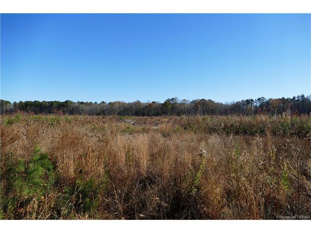 000 Pine Hall Rd, Mathews, VA 23109 (MLS #1740637) :: Small & Associates
