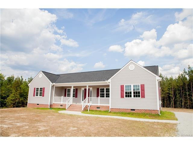 9025 Rock Cedar Road, New Kent, VA 23124 (MLS #1742268) :: The Ryan Sanford Team