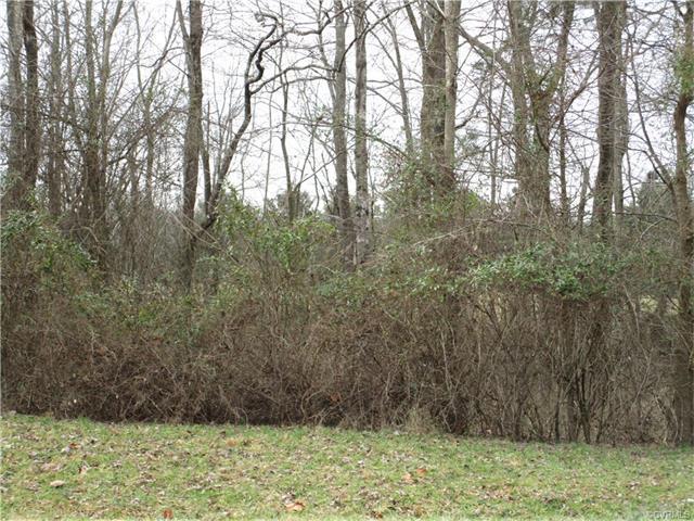 2460 Cedar Green, Powhatan, VA 23139 (#1800474) :: Abbitt Realty Co.