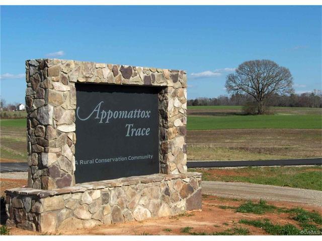 795 Appomattox Trace Road, Powhatan, VA 23139 (#1800484) :: Resh Realty Group