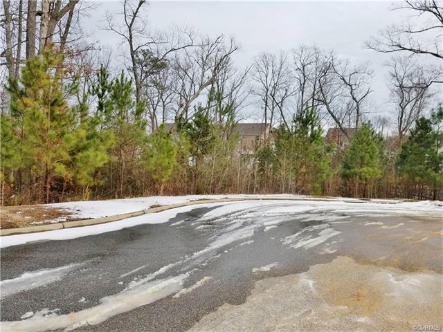 1733 Camerons Landing Boulevard, Hopewell, VA 23860 (MLS #1801070) :: The Ryan Sanford Team