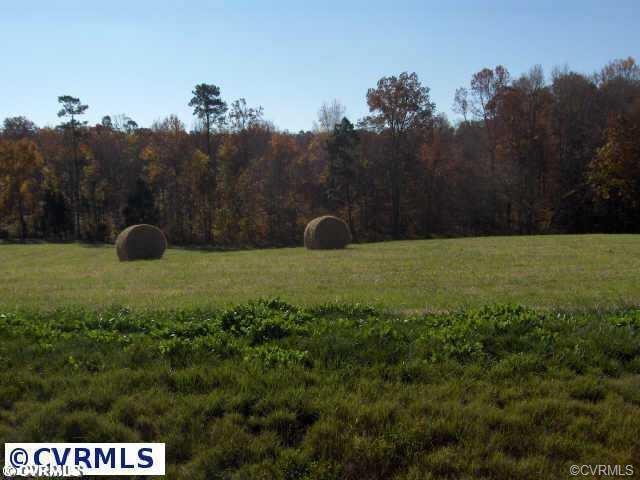 733 Appomattox Trace, Powhatan, VA 23139 (#1801327) :: Resh Realty Group