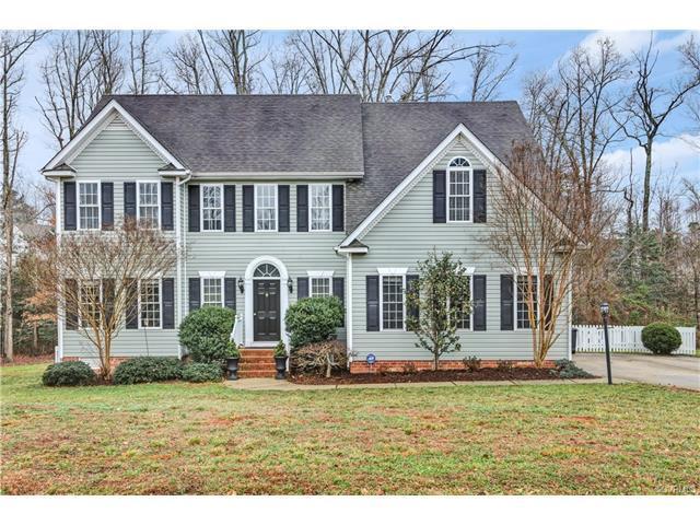 16313 Hampton Glen Lane, Chesterfield, VA 23832 (#1801882) :: Abbitt Realty Co.