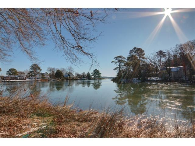 59 Pine View Drive, Foster, VA 23056 (MLS #1801918) :: Chantel Ray Real Estate