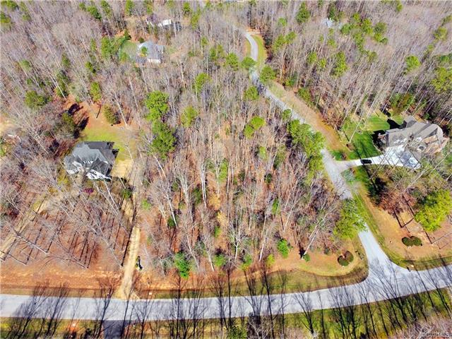 15554 Chesdin Landing Court, Chesterfield, VA 23838 (MLS #1802047) :: The RVA Group Realty