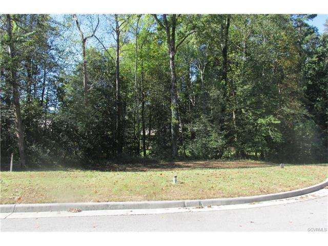 2 E Perthshire Court, Colonial Heights, VA 23834 (MLS #1804456) :: Explore Realty Group