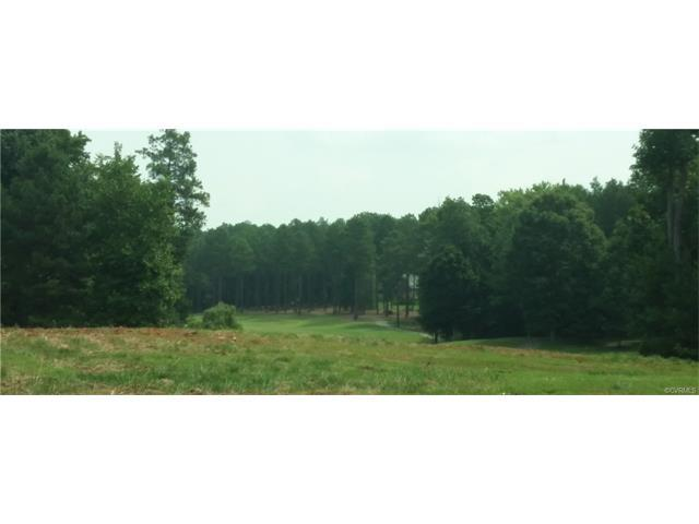 15007 Chesdin Green Way, Chesterfield, VA 23838 (#1805264) :: Abbitt Realty Co.
