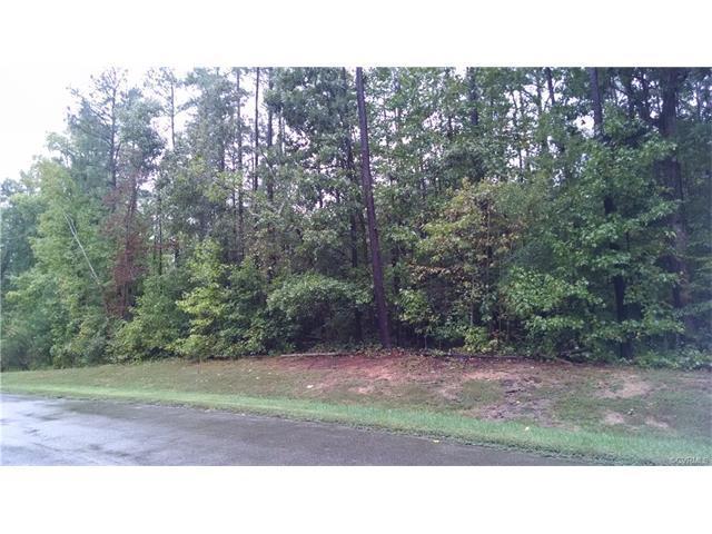 15242 Isle Pines Drive, Chesterfield, VA 23838 (#1805554) :: Abbitt Realty Co.