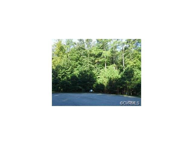 15630 Chesdin Manor Drive, Chesterfield, VA 23838 (#1805687) :: Abbitt Realty Co.