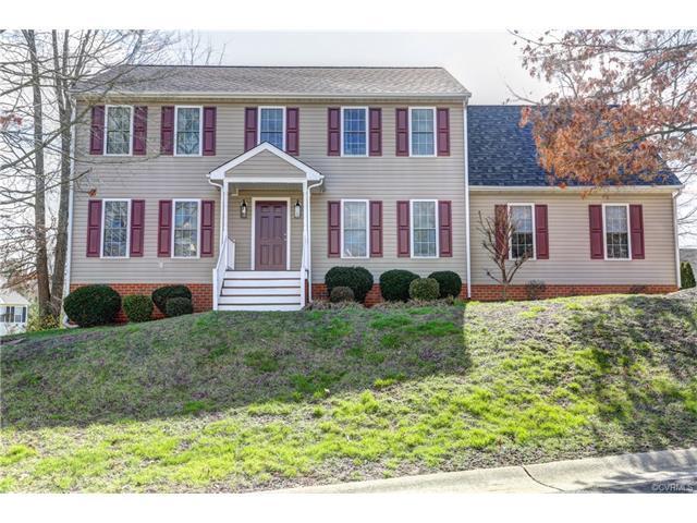 12401 Ivytree Terrace, Chester, VA 23831 (MLS #1805790) :: The Ryan Sanford Team