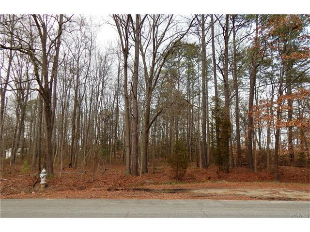 5700 Beechnut Avenue, South Chesterfield, VA 23803 (MLS #1806259) :: RE/MAX Commonwealth