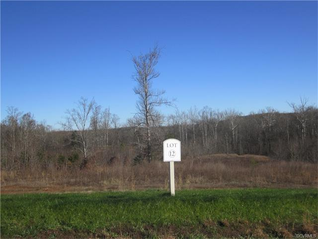 Lot 12 Anderson Mill Drive, Bumpass, VA 23024 (#1806295) :: Resh Realty Group