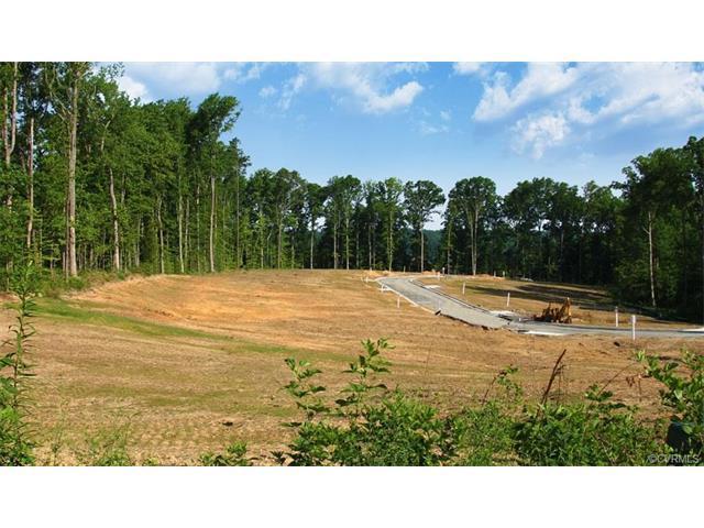 6636 Temie Lee, Midlothian, VA 23112 (MLS #1807415) :: Chantel Ray Real Estate