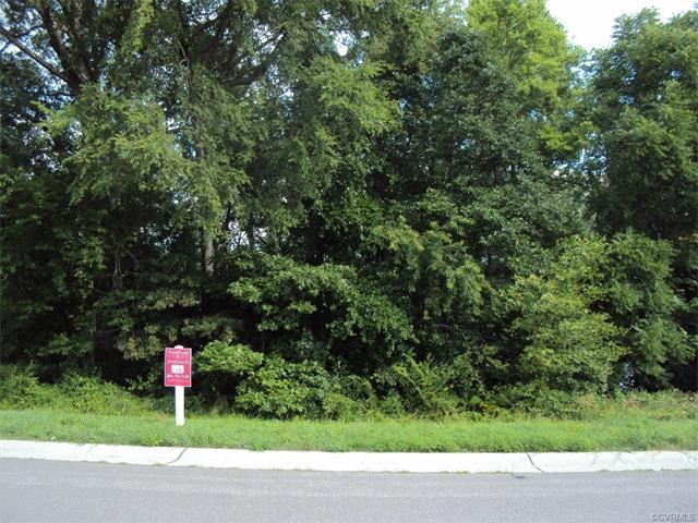 22191 Jordan Heights Drive, Dinwiddie, VA 23803 (#1807621) :: Resh Realty Group