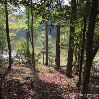 o Widgeon Court, Heathsville, VA 22473 (#1808463) :: Abbitt Realty Co.
