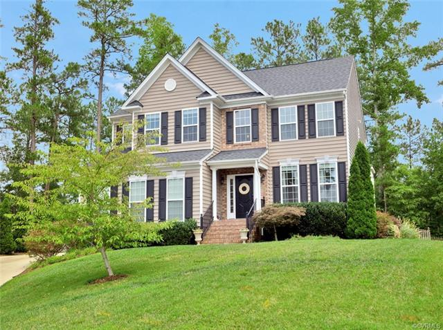 11707 Black Alder Drive, Moseley, VA 23120 (MLS #1808712) :: Chantel Ray Real Estate