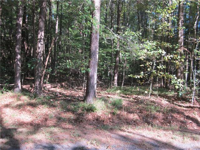 0 Georgia Ave, Heathsville, VA 22473 (#1809327) :: Abbitt Realty Co.