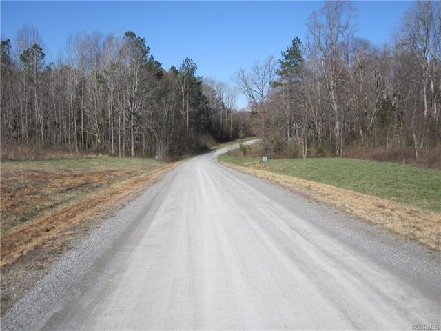 14 Mill Branch Way, Bumpass, VA 23024 (#1810499) :: Resh Realty Group