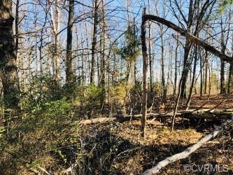 0 Caroline Village, Woodford, VA 22580 (#1810556) :: Abbitt Realty Co.