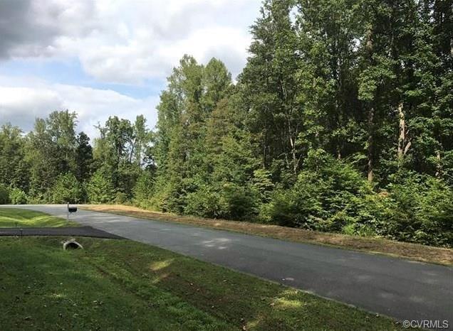 2431 Gammons Creek Drive, Maidens, VA 23102 (#1810680) :: Resh Realty Group
