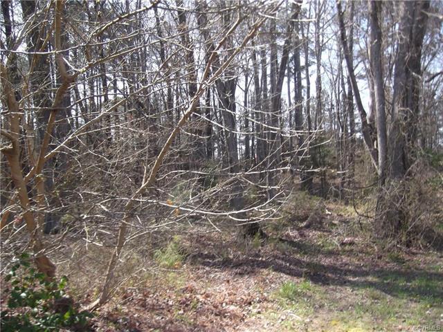 none N. Main, Blackstone, VA 23824 (MLS #1812306) :: Chantel Ray Real Estate