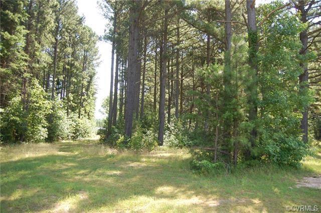 1103 Stingy Lane, Blackstone, VA 23824 (MLS #1813435) :: Chantel Ray Real Estate