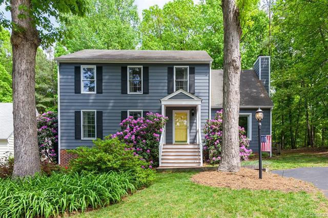 2205 Turtle Hill Place, Midlothian, VA 23112 (MLS #1814498) :: RE/MAX Action Real Estate