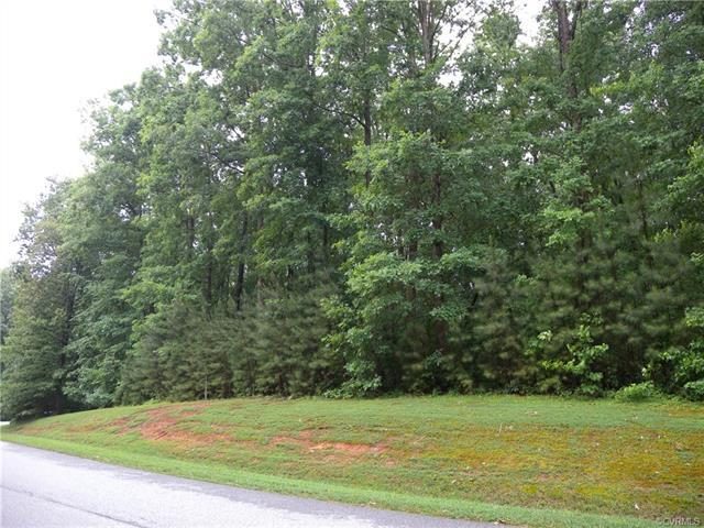 12437 Chesdin Landing Drive, Chesterfield, VA 23838 (MLS #1814550) :: The RVA Group Realty
