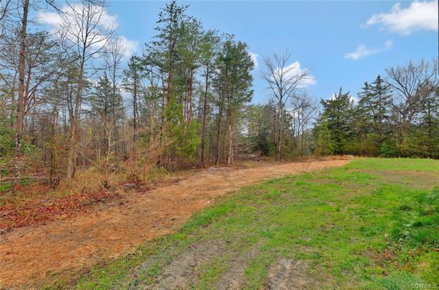 0 Miles Rd, Powhatan, VA 23139 (MLS #1814579) :: The RVA Group Realty