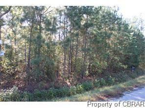 0 North River Road, Mathews, VA 23109 (MLS #1814879) :: Chantel Ray Real Estate