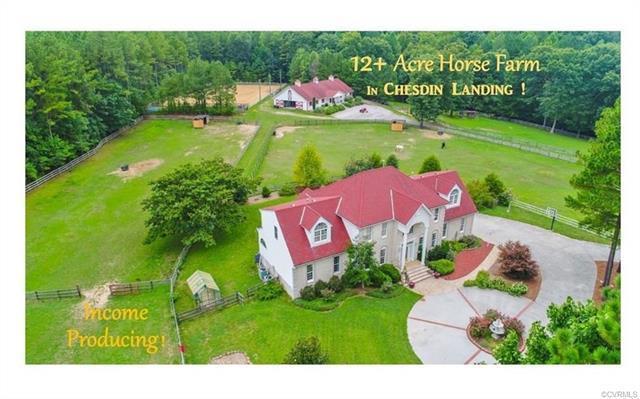 12400 Chesdin Landing Drive, Chesterfield, VA 23838 (#1816806) :: Abbitt Realty Co.