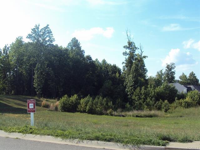 22070 Lake Jordan Road, Dinwiddie, VA 23803 (#1817033) :: Resh Realty Group
