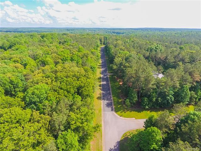3097 Braehead Road, Powhatan, VA 23139 (#1818415) :: Abbitt Realty Co.