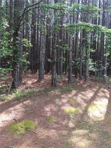 Lot 43 White Oak, Boydton, VA 23917 (#1818924) :: Abbitt Realty Co.